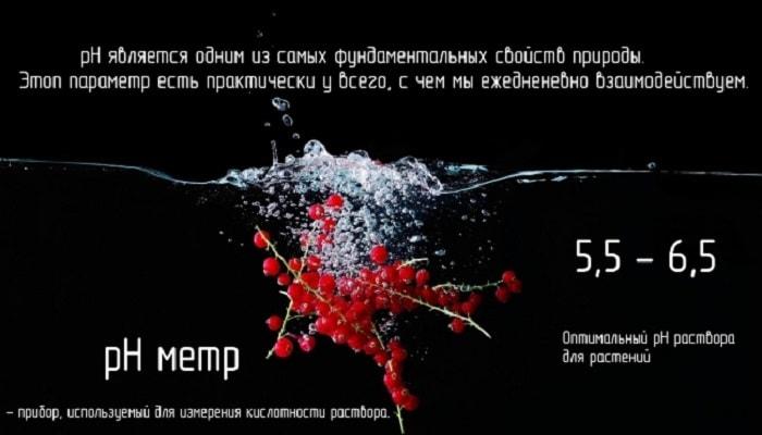 РН воды для гидропоники