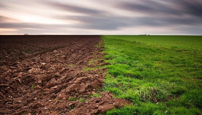 Химические свойства почвы и РН почвы