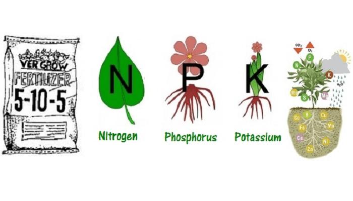 Удобрения для гидропоники: NPK
