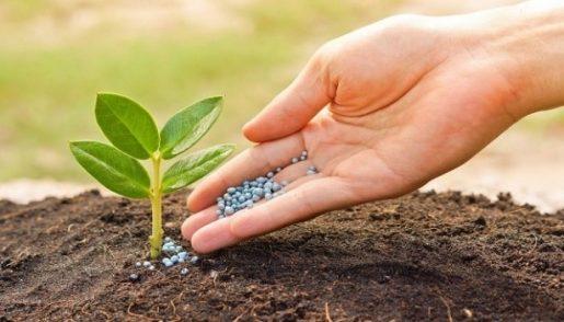 био-добавка, выращивание конопли,
