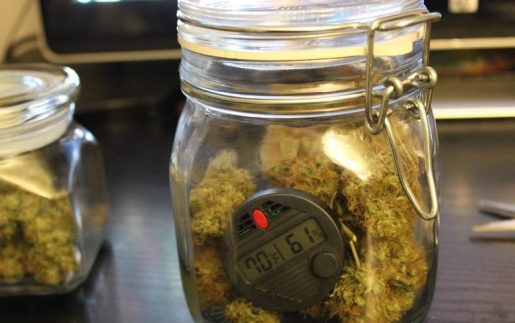 пролечка марихуаны