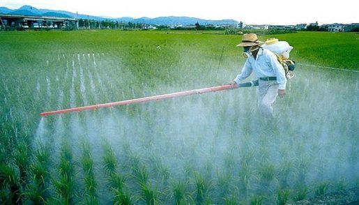 пестициды для конопли