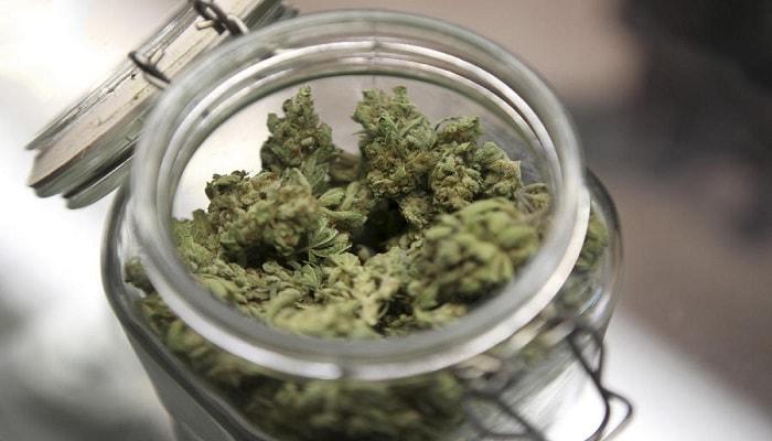 Как сохранить марихуану «в нужной кондиции»?