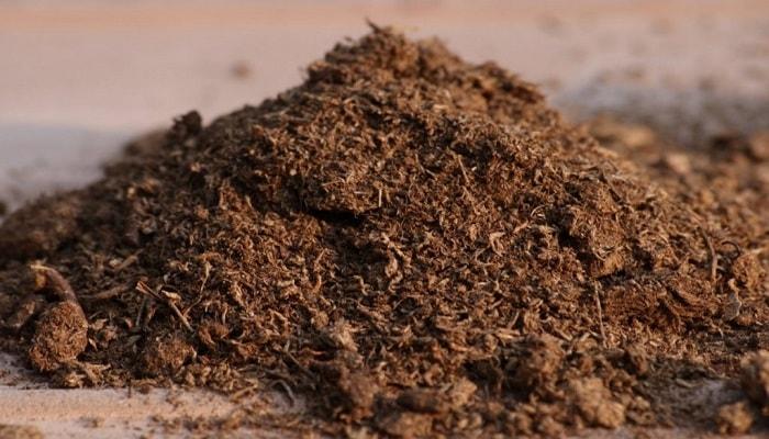 сухая почва в гроубоксе