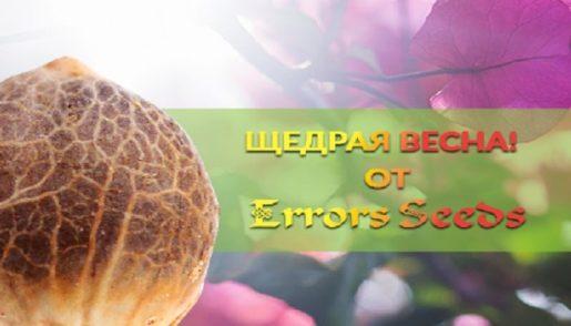 акция от errors seed
