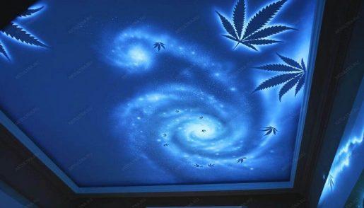 свет для марихуаны,