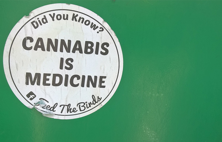Безопасность и эффективность медицинской марихуаны в цифрах