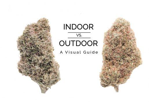 Outdoor-vs-Indoor