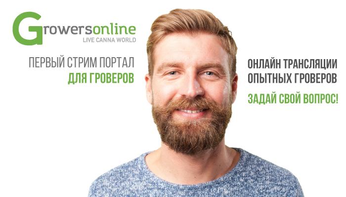 Growersonline – площадка видео-трансляций для гроверов