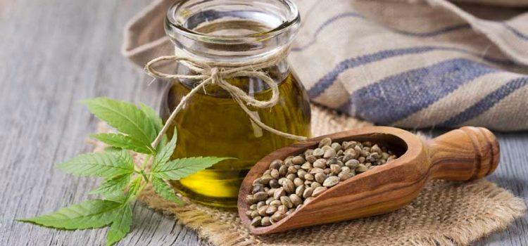 Польза конопляного семени