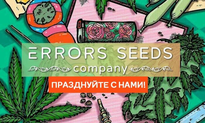День Рождения Компании Error-seeds