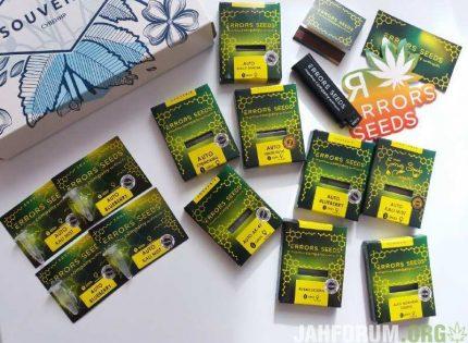 Тестирование прорастаемости семян конопли от сидбанка Errors Seeds