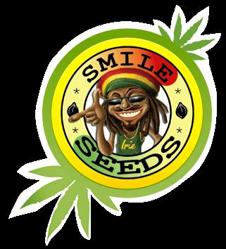 Обзор интернет-магазина семян конопли «Smileseeds»