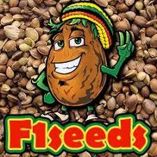 Обзор магазина семян конопли «F1seeds»