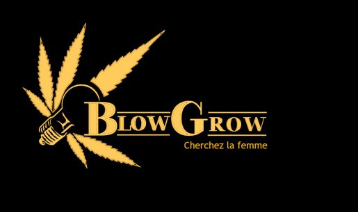 выращивание конопли, выращивание марихуаны, семена конопли, семена марихуаны,