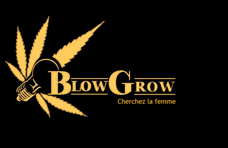 Обзор интернет-магазина семян марихуаны «Blowgrow»