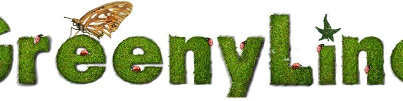 Обзор магазина семян «Greenyline»