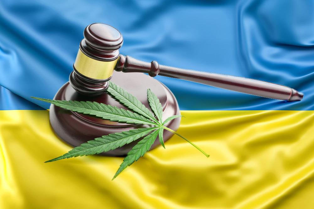 Закон Украины про семена конопли, который должен знать каждый гровер.