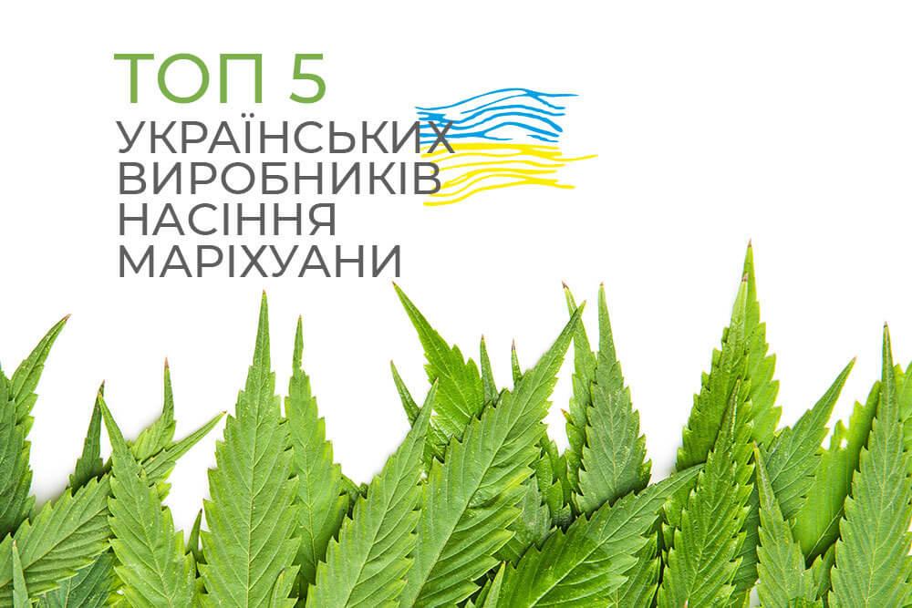 ТОП 5 українських виробників насіння маріхуани