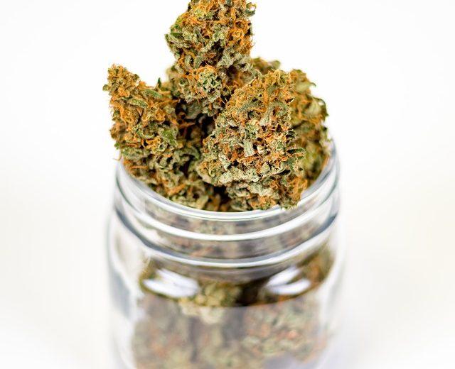 Срок годности марихуаны