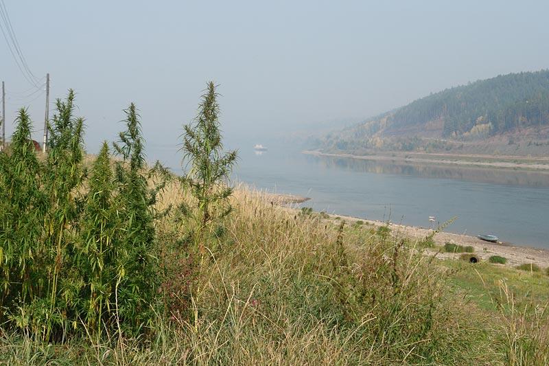 Lena-River-005