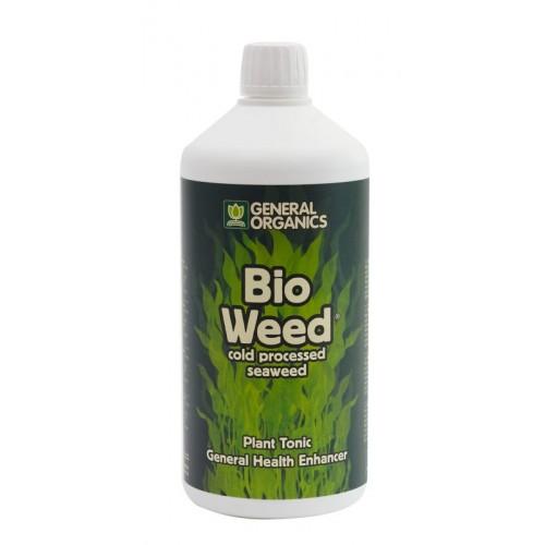 pic-bioweed-2011-01-web-500x500